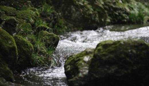 水道水がまろやかに!蛇口直結型おすすめ浄水器5選