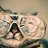 メガネのズレ防止おすすめグッズ7選