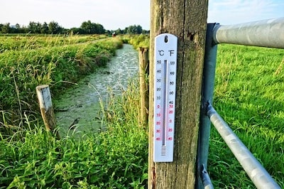 温度計 水温計