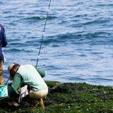 釣りやキャンプにおすすめ!キャスター付きクーラーボックス5選